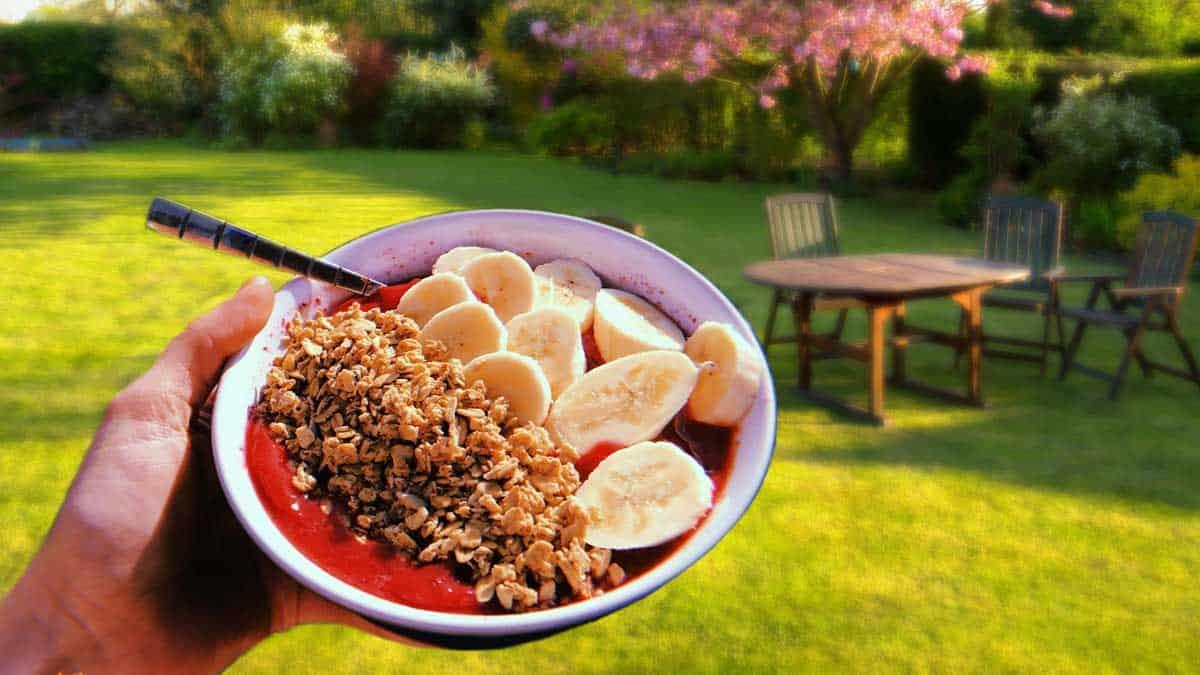 breakfast in the back garden image