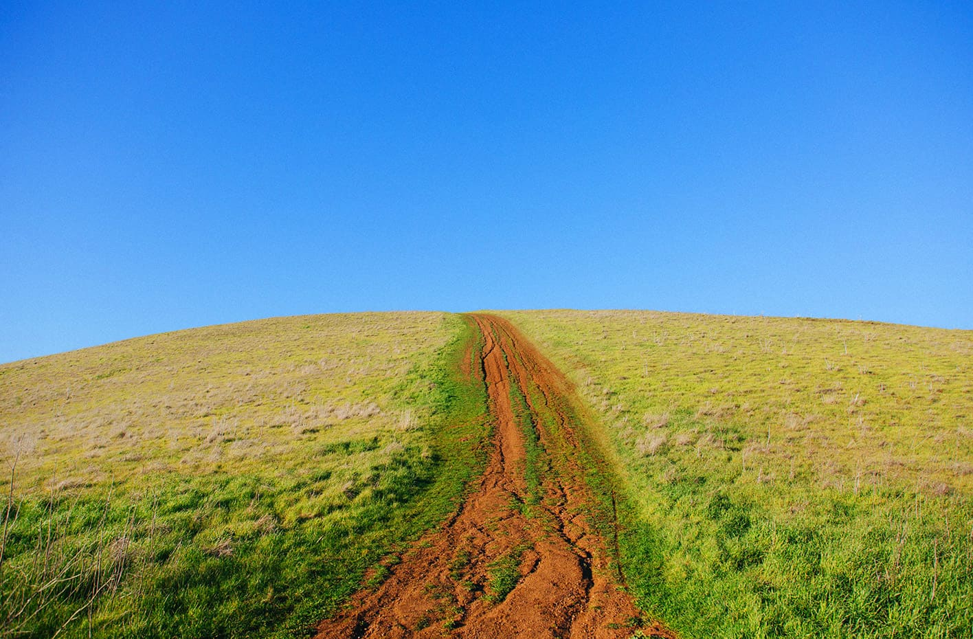 cutting through green noise - field with dirt track